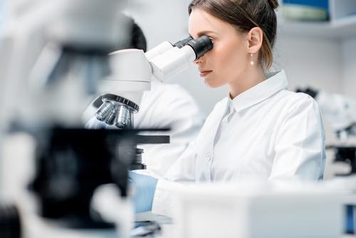 microscope in lab
